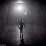 Rain Room Melbourne: Tips For Visiting
