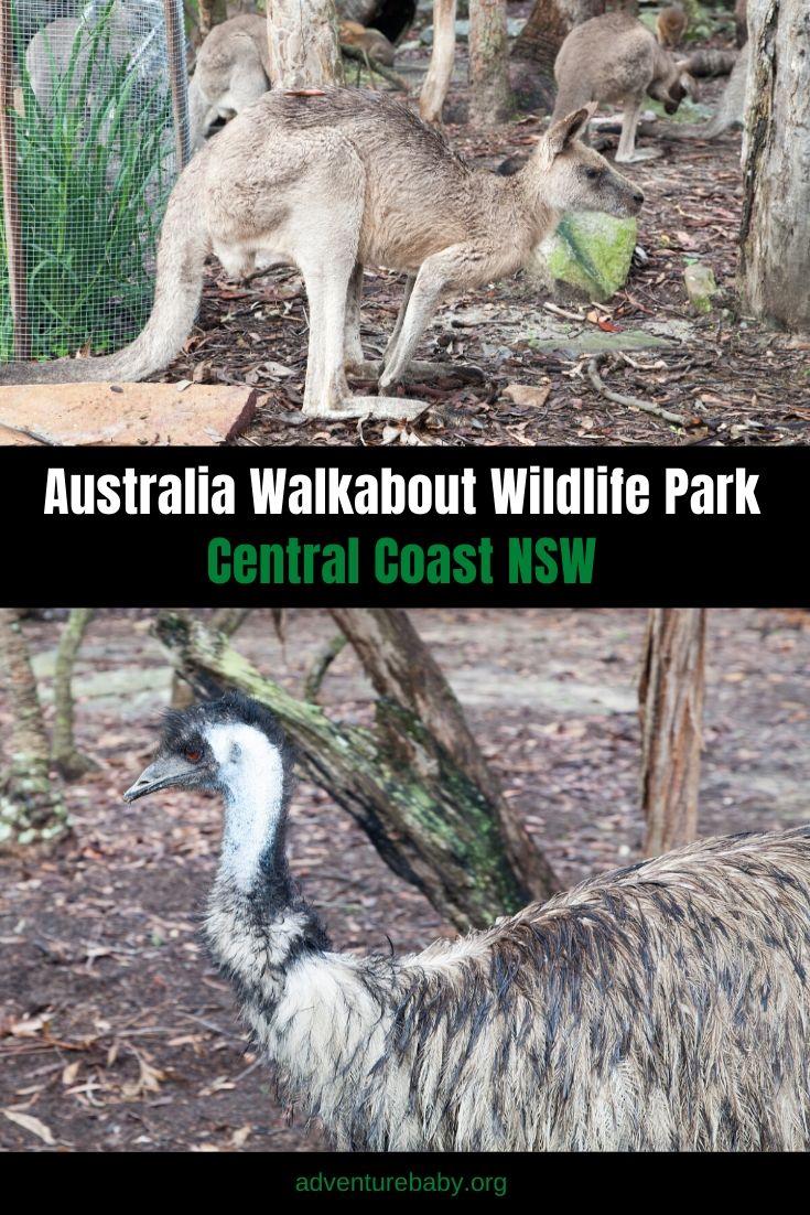 Australia Walkabout Wildlife Park: Central Coast, NSW