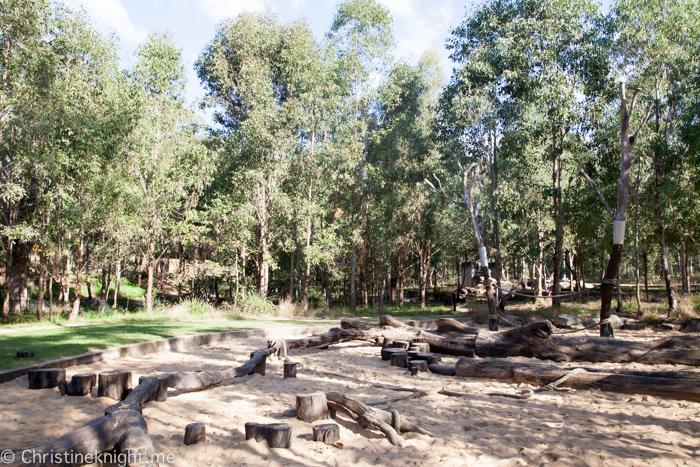 Lizard Log Park and Playground