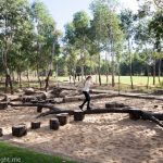 Lizard Log Park & Playground, Western Sydney Parklands
