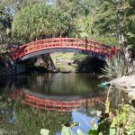 Sydney Day Trips: Wollongong Botanic Garden