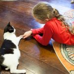 A Purriffic Time at the Catmosphere Cat Cafe Sydney