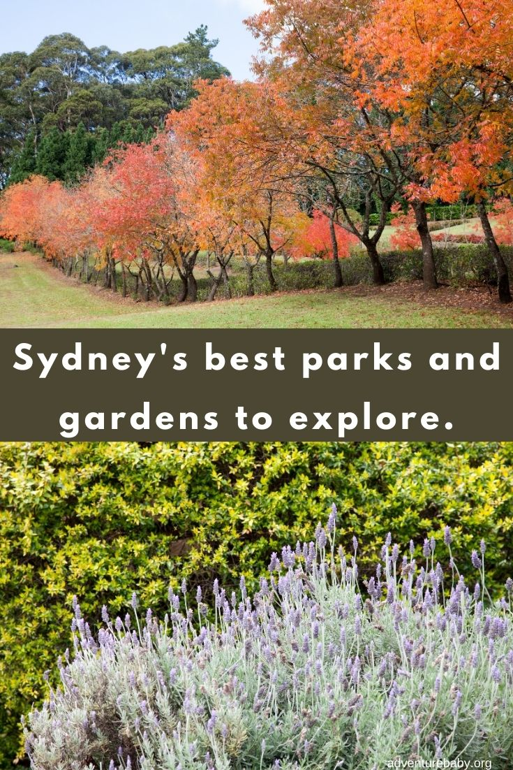 Explore the most beautiful Sydney gardens and parks