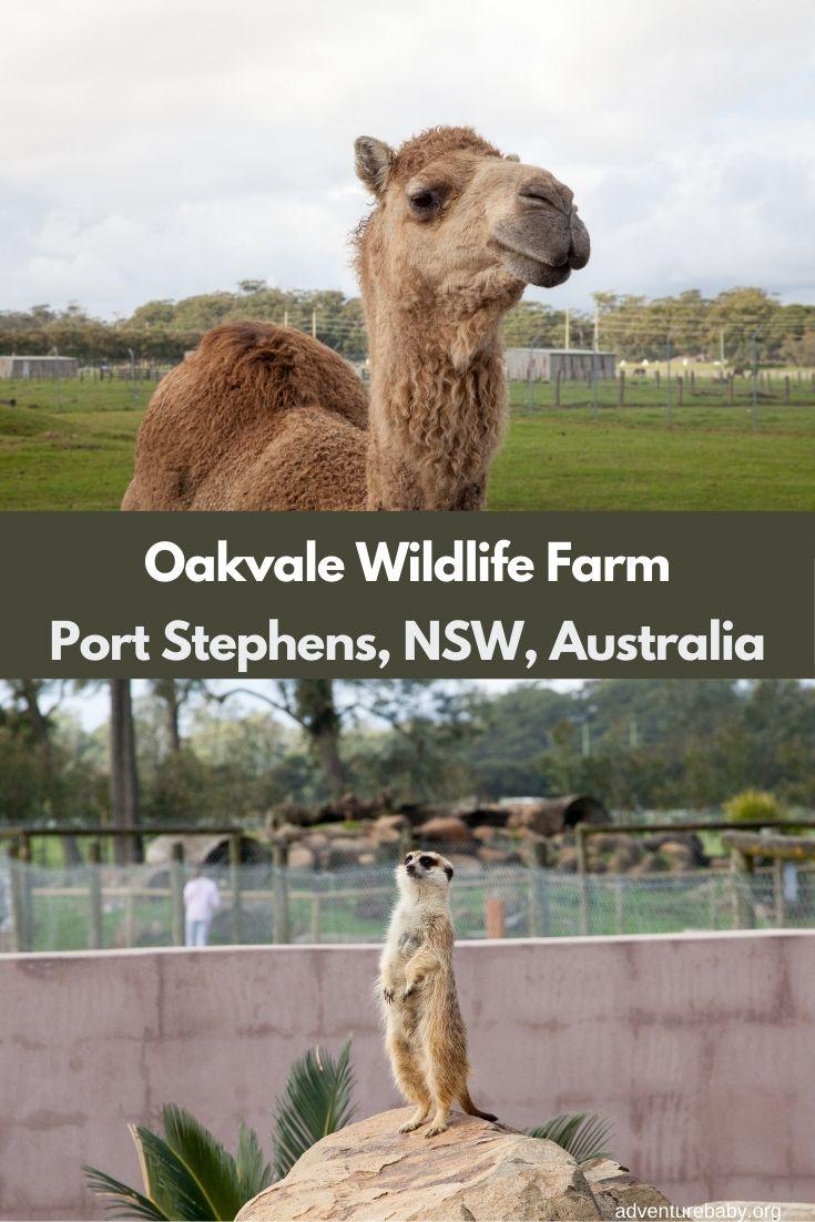 Oakvale Wildlife Farm Port Stephens, NSW, Australia