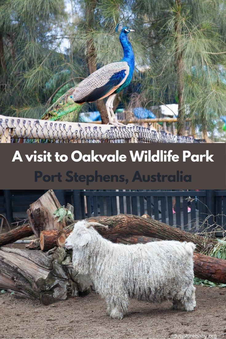 Oakvale Wildlife Farm, Port Stephens Australia
