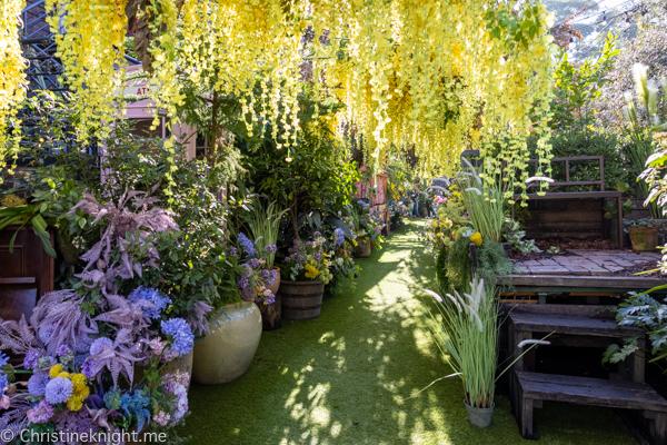 Secret Garden at the Grounds of Alexandria