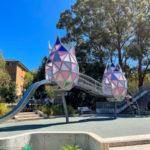 Elouera Reserve & Playground, Macquarie Park